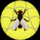 WebLight