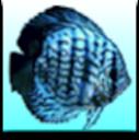Dashboard de Aquarium for Mac