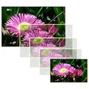 ImageHorn For Mac