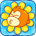 Pee Monkey Plant Bloom for Mac