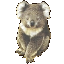 Koala Image Viewer