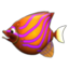 Feeding Frenzy icon