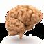 Brain Tease icon