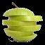 Schnitz Remote Lite icon