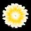 Subliminal Image Pro icon