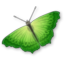 Switché icon