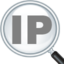 IP Address and Domain Information icon