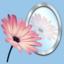 Photo Reflect icon