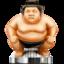 File Sumo icon