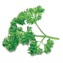 Parsley is Atomically Delicious 1.5