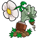 Plants vs Zombies 1.0.40